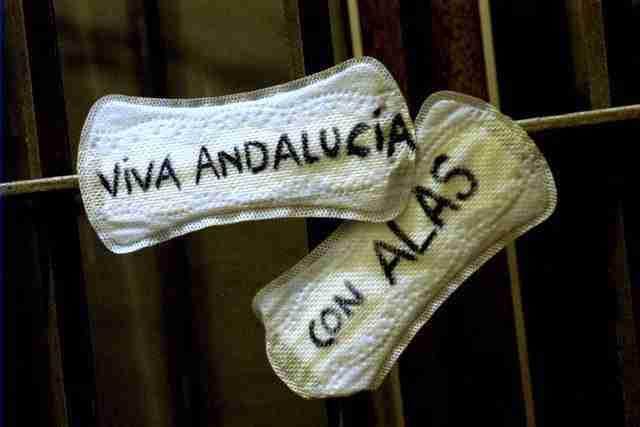 Viva Andalucía con alas
